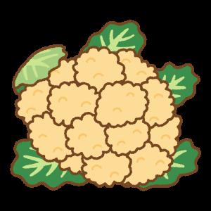 オレンジのカリフラワーのフリーイラスト Clip art of orange cauliflower