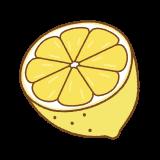 レモンの断面のフリーイラスト Clip art of lemon cut