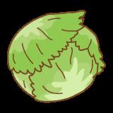 レタスのフリーイラスト Clip art of lettuce