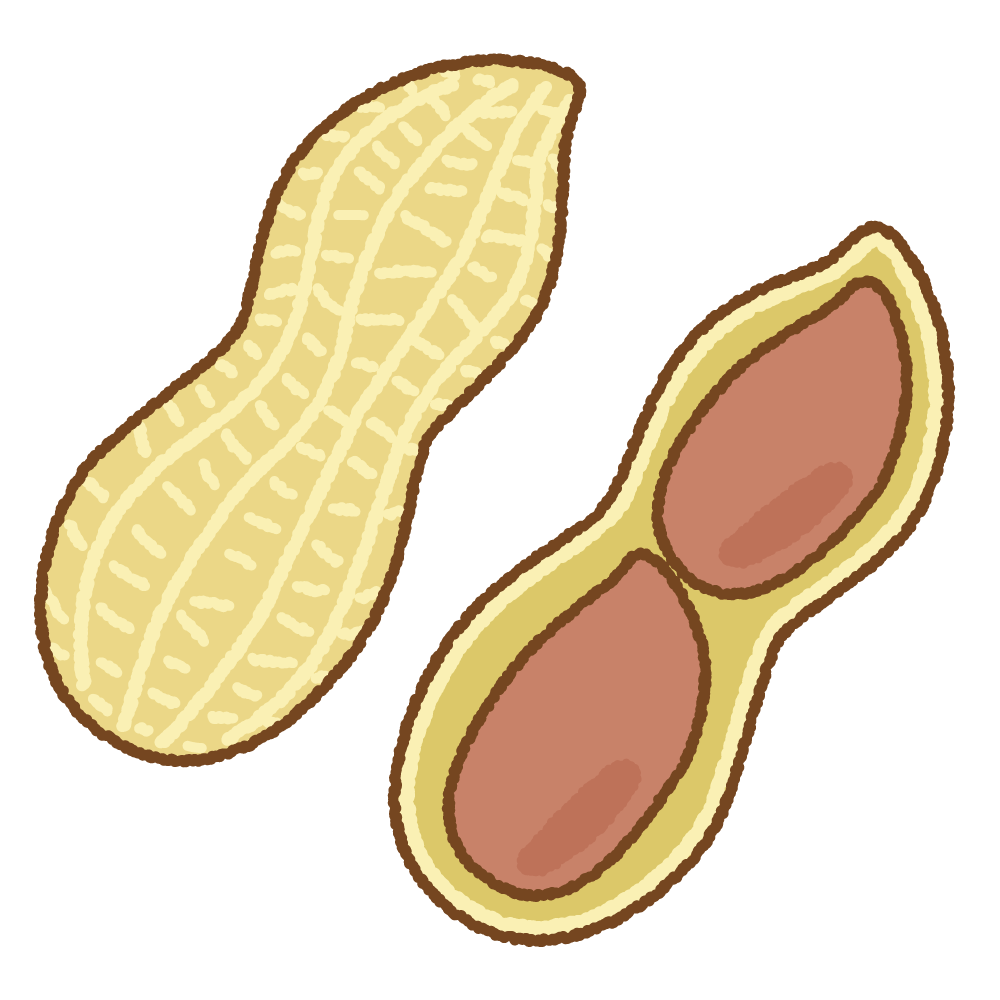 落花生のフリーイラスト Clip art of peanuts