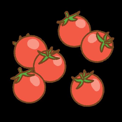 プチトマトのイラスト
