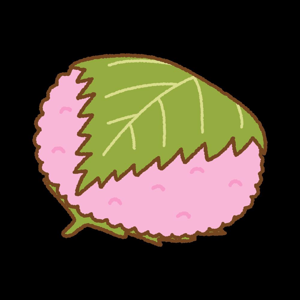関西風桜餅のフリーイラスト Clip art of sakuramochi