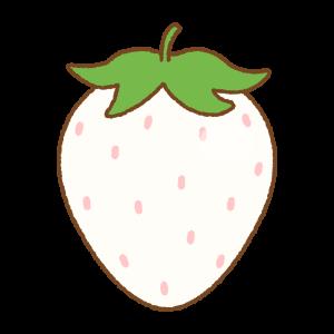 白いイチゴのフリーイラスト Clip art of white strawberry