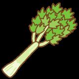 セロリのフリーイラスト Clip art of celery