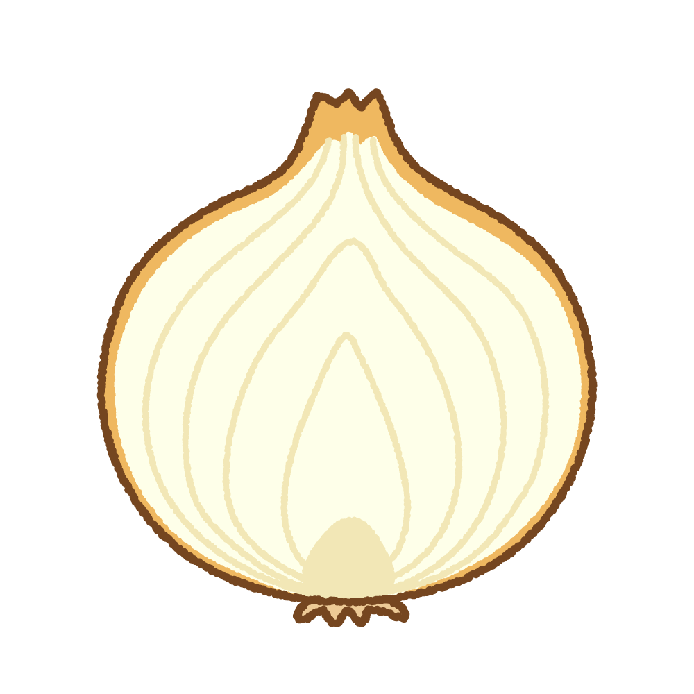 タマネギの断面のフリーイラスト Clip art of onion cut