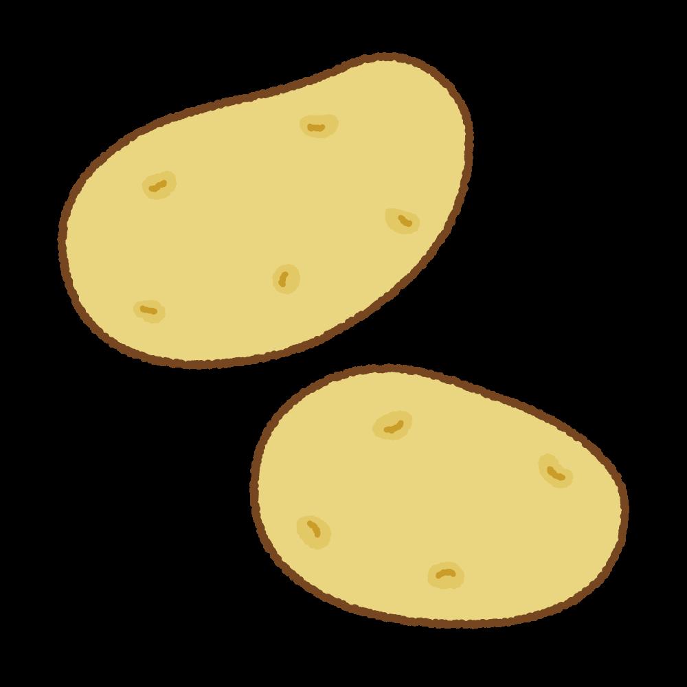 メークインじゃがいものフリーイラスト Clip art of potato me-kuin
