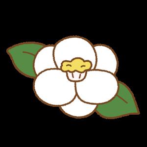 ツバキのフリーイラスト Clip art of camellia
