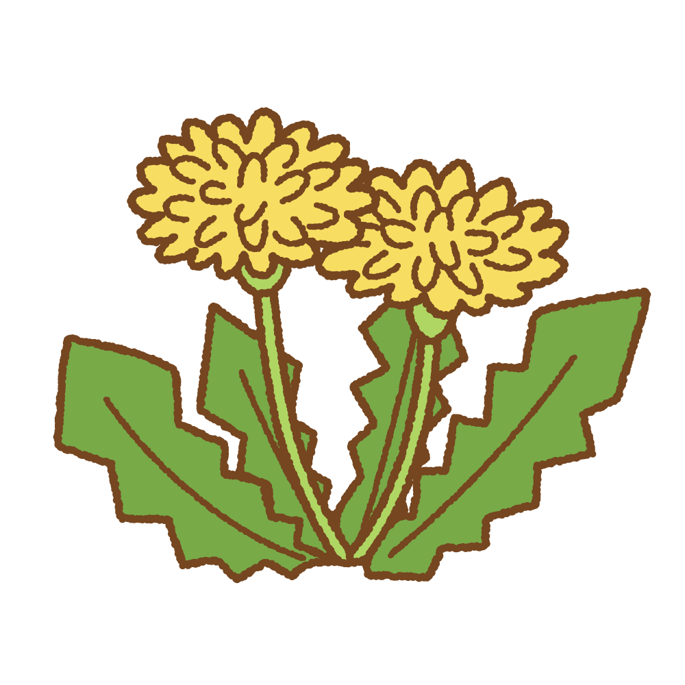 タンポポのフリーイラスト Clip art of dandelion