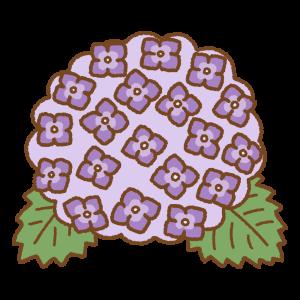 紫のアジサイのフリーイラスト Clip art of purple hydrangea