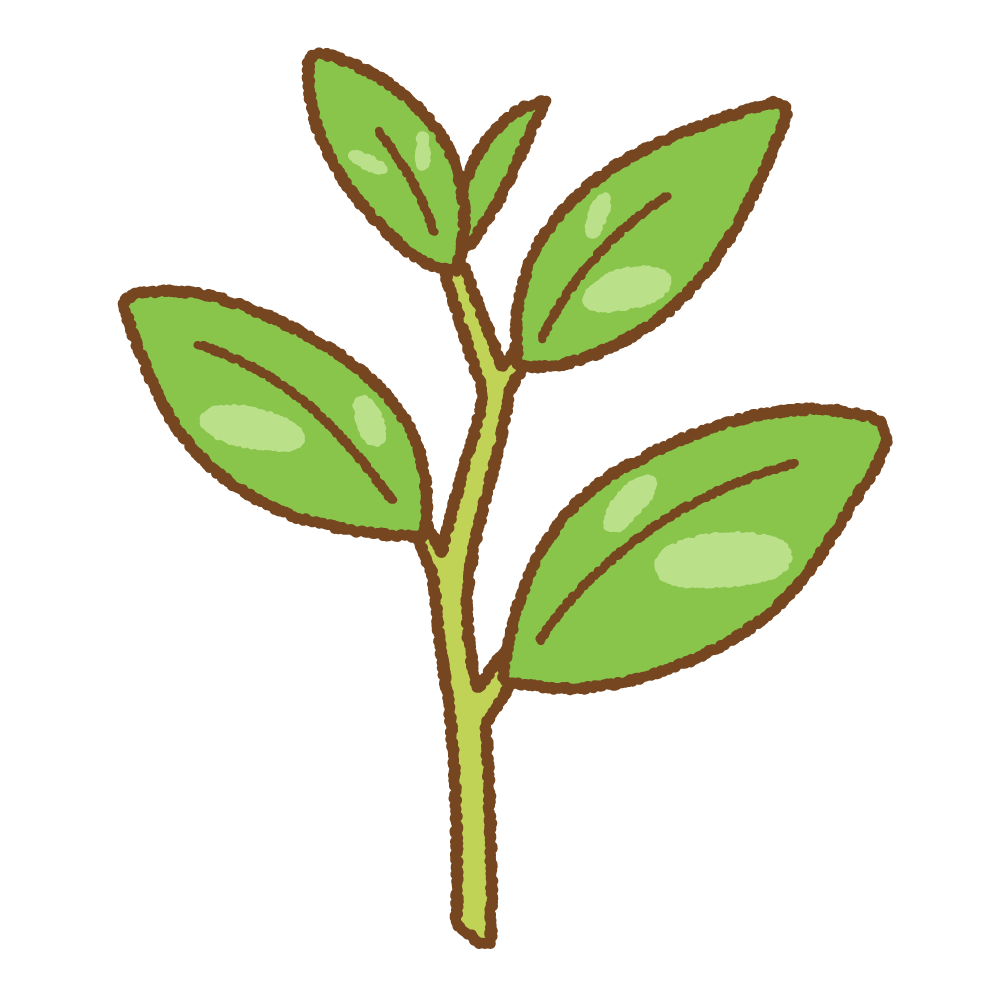 新茶葉のフリーイラスト Clip art of shin-chaba