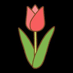 チューリップのフリーイラスト Clip art of tulip