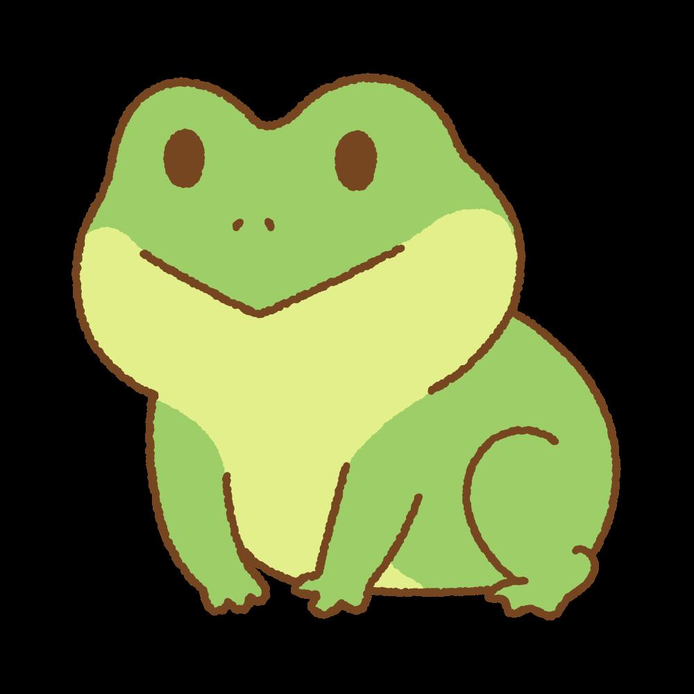 成長したカエルのフリーイラスト Clip art of frog