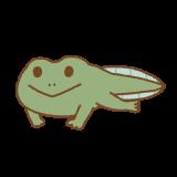まだ尻尾のあるカエルのイラスト