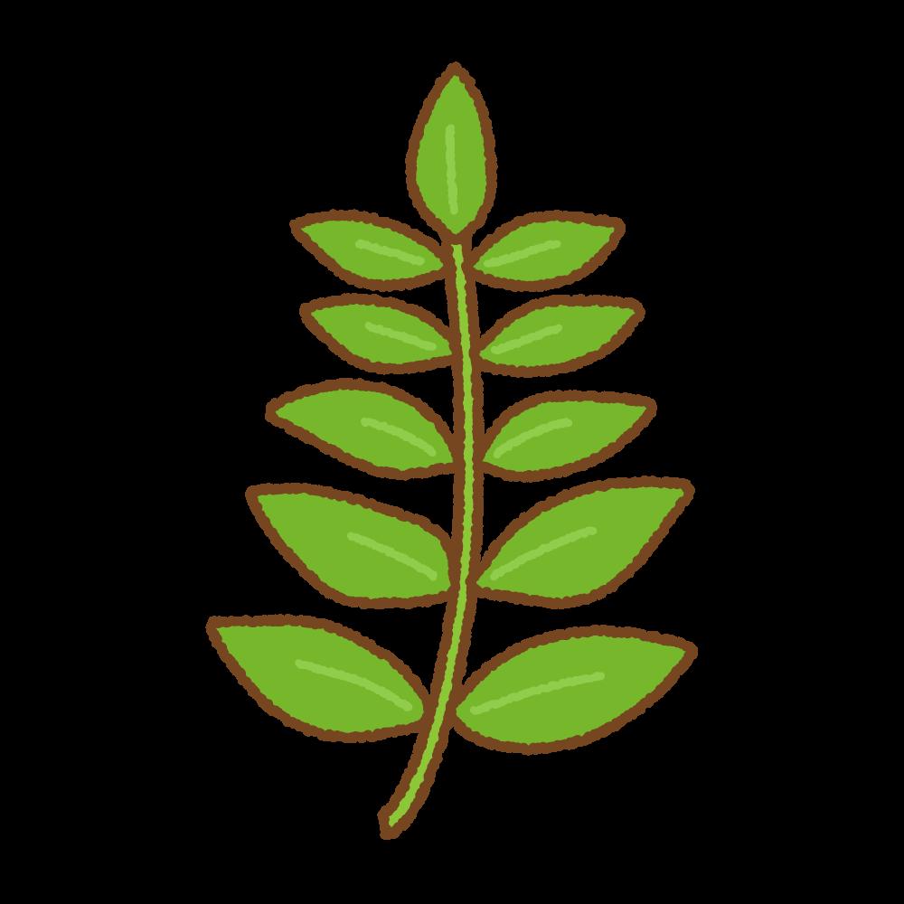 木の芽のフリーイラスト Clip art of kinome