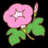 ピンクの朝顔のフリーイラスト Clip art of pink morning-glory
