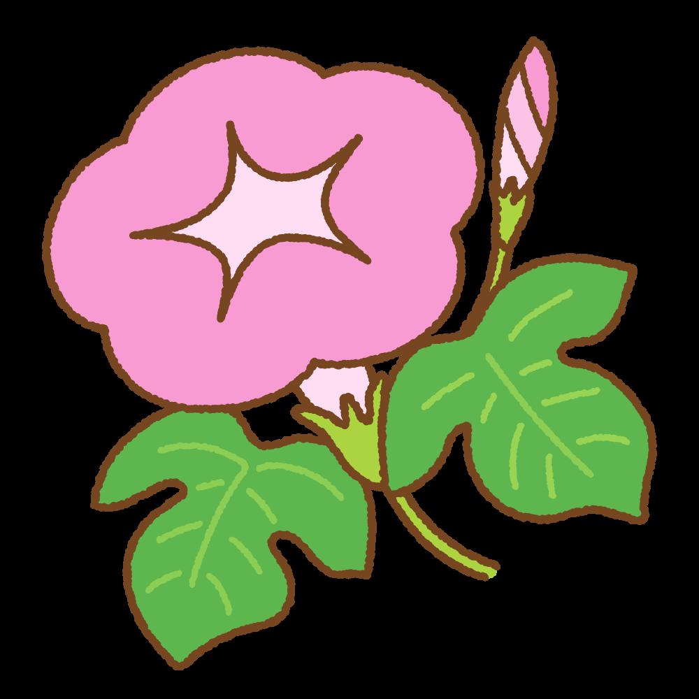 ピンクのアサガオのフリーイラスト Clip art of pink morning-glory