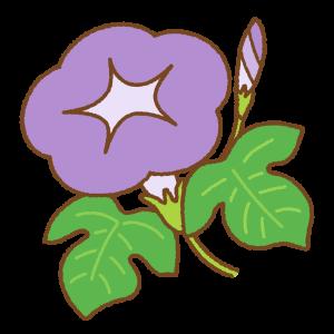 紫のアサガオのフリーイラスト Clip art of purple morning-glory
