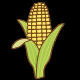 トウモロコシのフリーイラスト Clip art of corn