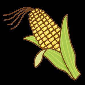 ヒゲ付きトウモロコシのフリーイラスト Clip art of corn