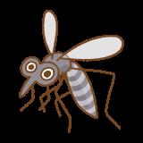蚊のフリーイラスト Clip art of mosquito