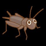 コオロギのフリーイラスト Clip art of grylloidea
