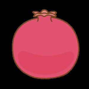 ザクロのフリーイラスト Clip art of pomegranate