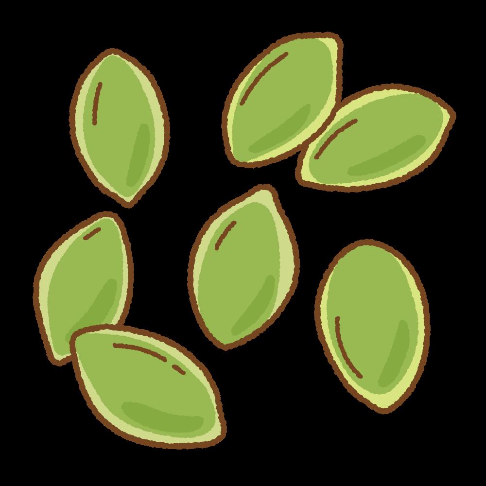 パンプキンシードのフリーイラスト Clip art of pumpkin seed