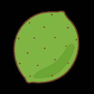 ライムのフリーイラスト Clip art of lime