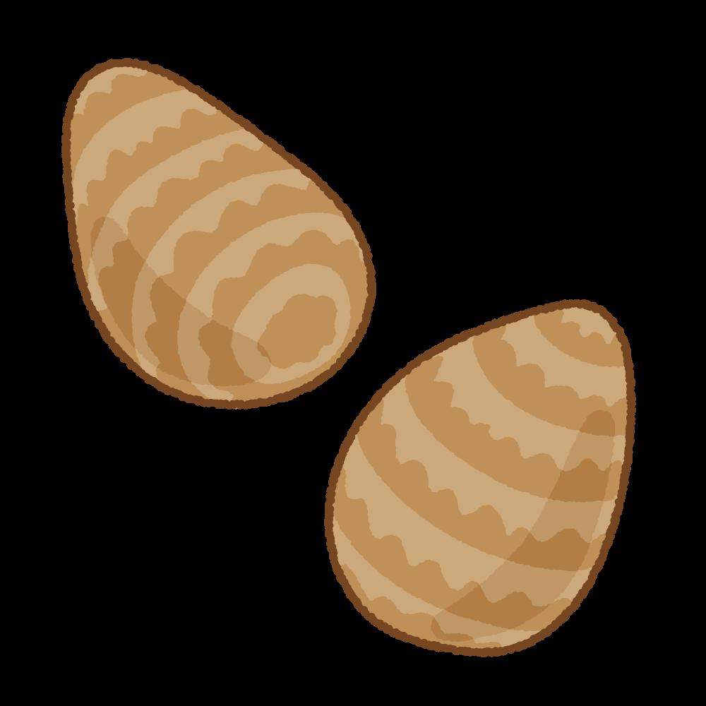 サトイモのフリーイラスト Clip art of satoimo