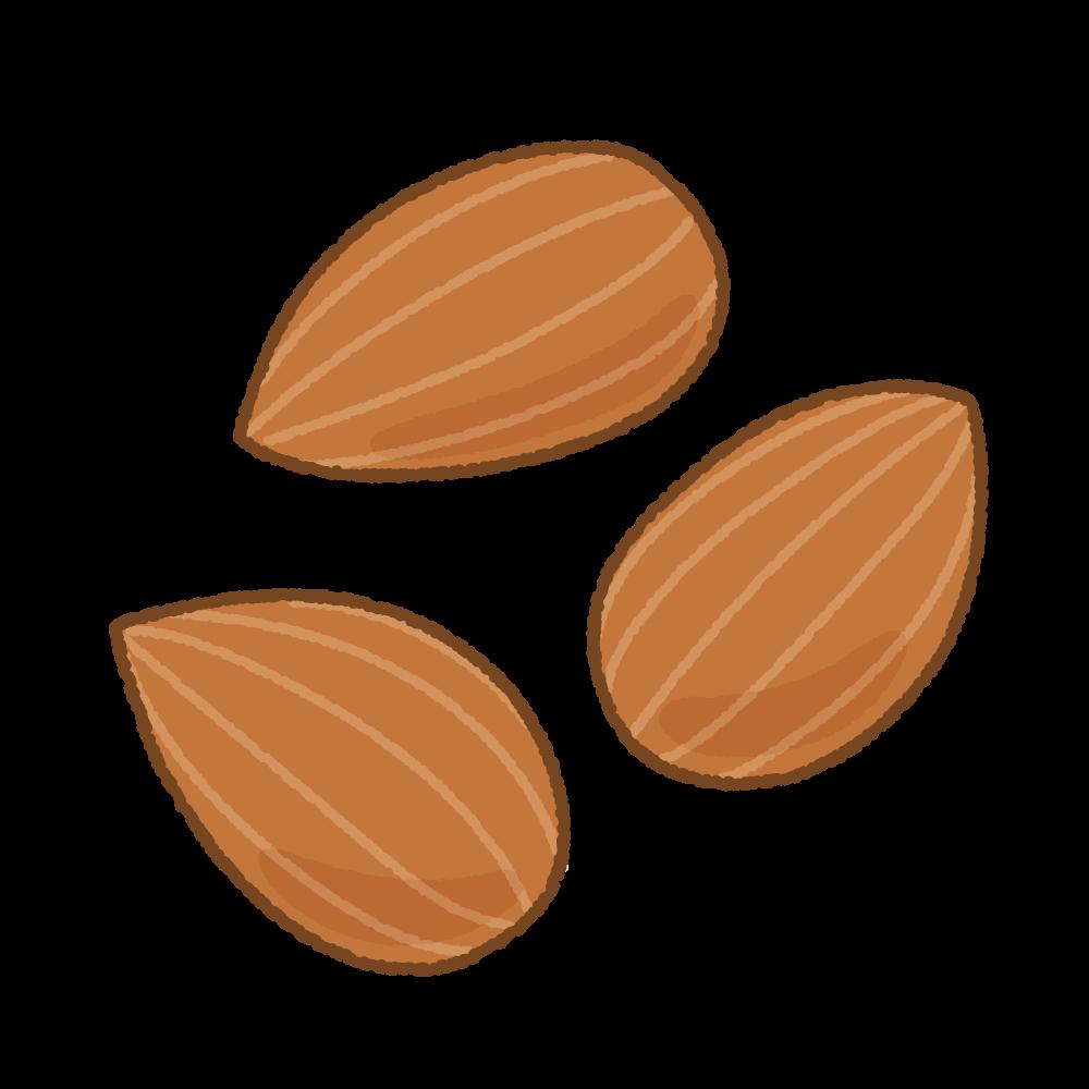 アーモンドのフリーイラスト Clip art of almond