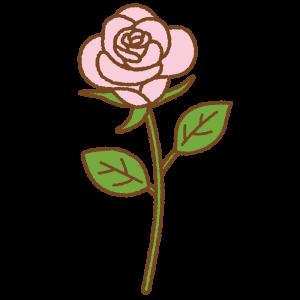 ピンクのバラのフリーイラスト Clip art of pink rose