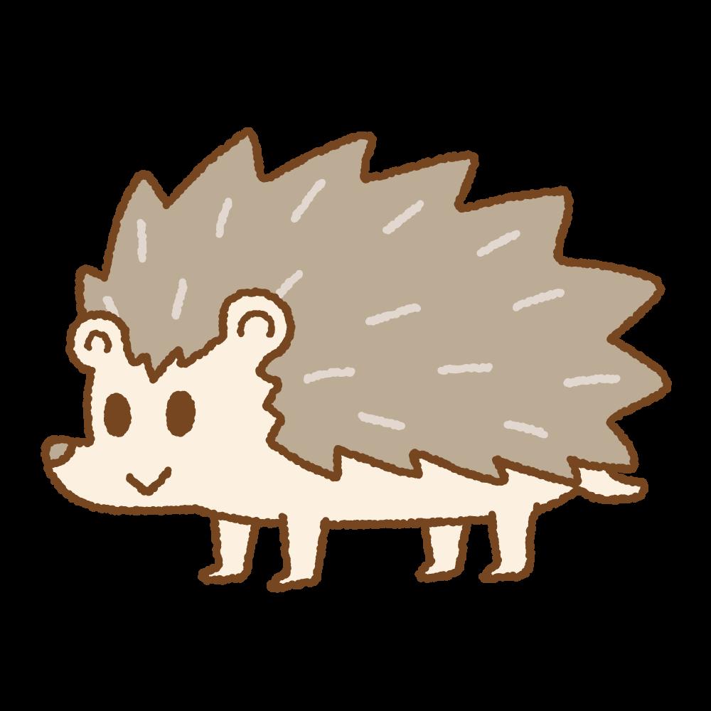 ハリネズミのフリーイラスト Clip art of hedgehog