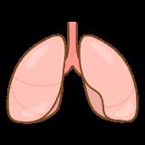 肺のフリーイラスト Clip art of lung