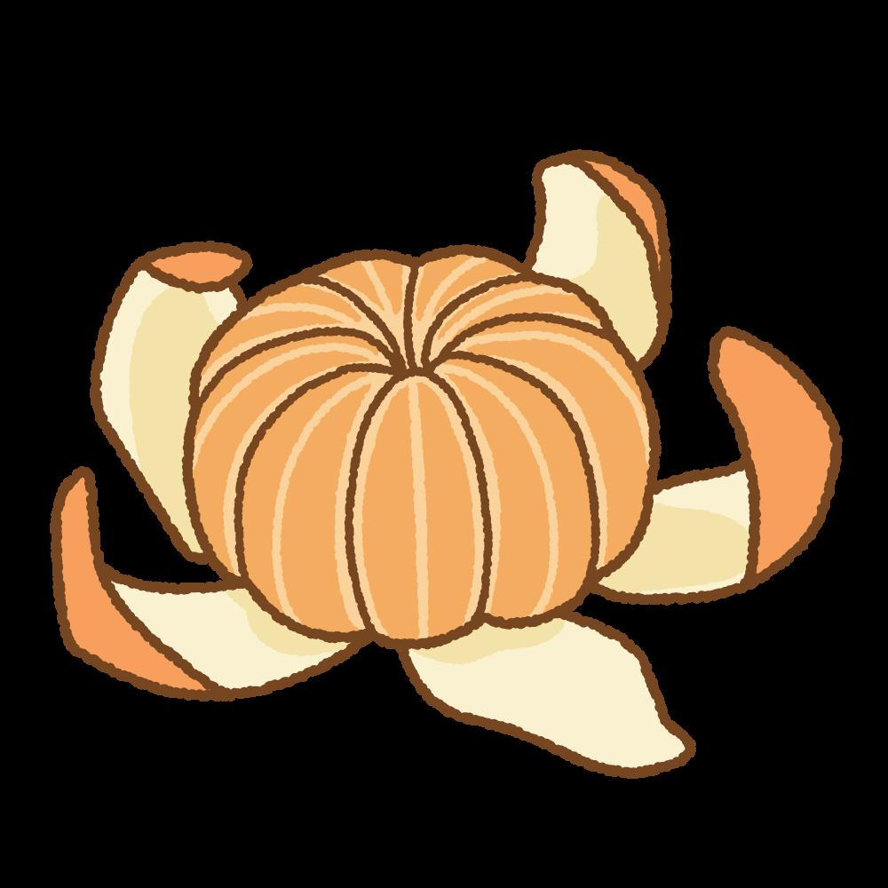 皮を剥いたミカンのフリーイラスト Clip art of satsuma orange