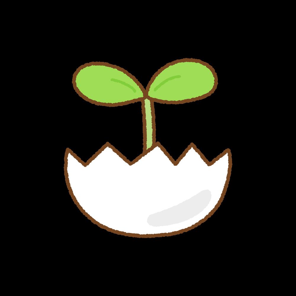 タマゴから出た芽のフリーイラスト Clip art of sprout egg