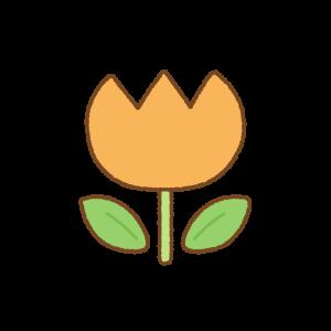 オレンジのチューリップのフリーイラスト Clip art of orange tulip