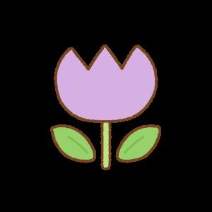 紫のチューリップのフリーイラスト Clip art of purple tulip