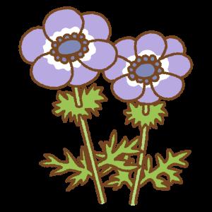 紫のアネモネのフリーイラスト Clip art of purple anemone