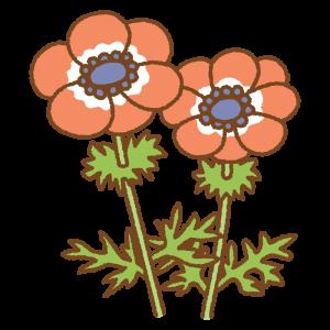 赤いアネモネのフリーイラスト Clip art of red anemone