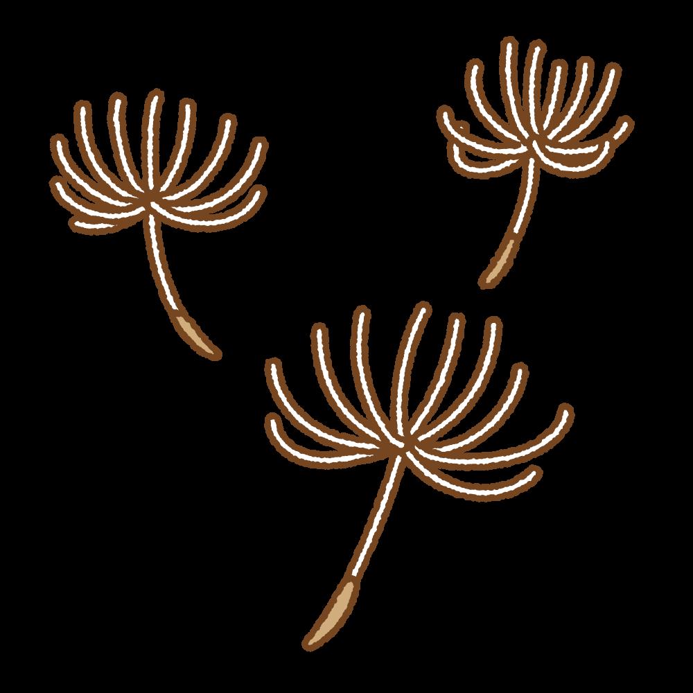 タンポポの綿毛のフリーイラスト Clip art of dandelion fluff