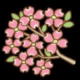 ピンクのハナミズキのフリーイラスト Clip art of pink dogwood