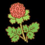 ヘビイチゴのイラスト