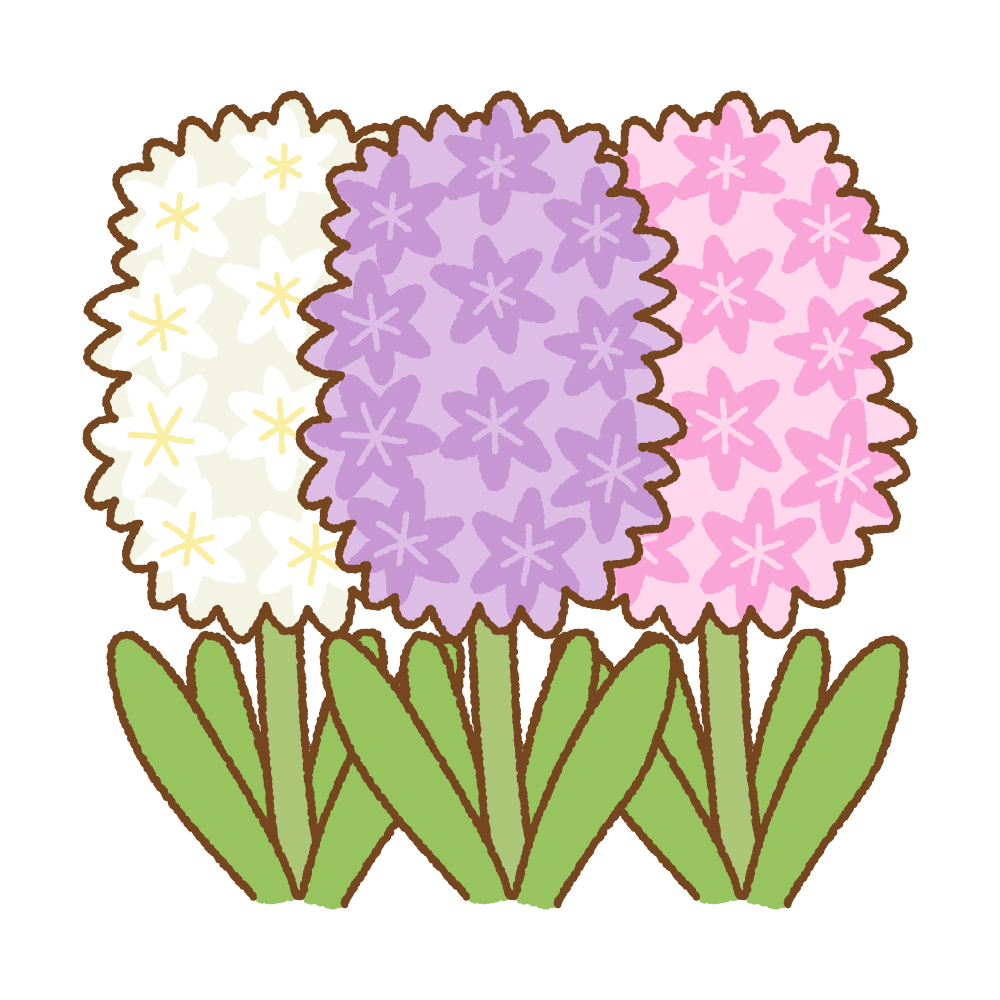 ヒヤシンスのフリーイラスト Clip art of hyacinth
