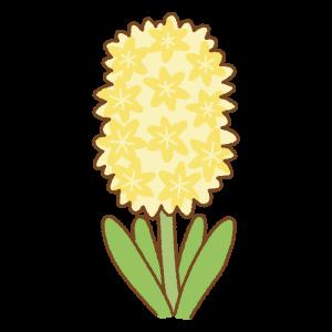黄色のヒヤシンスのフリーランス Clip art of yellow hyacinth