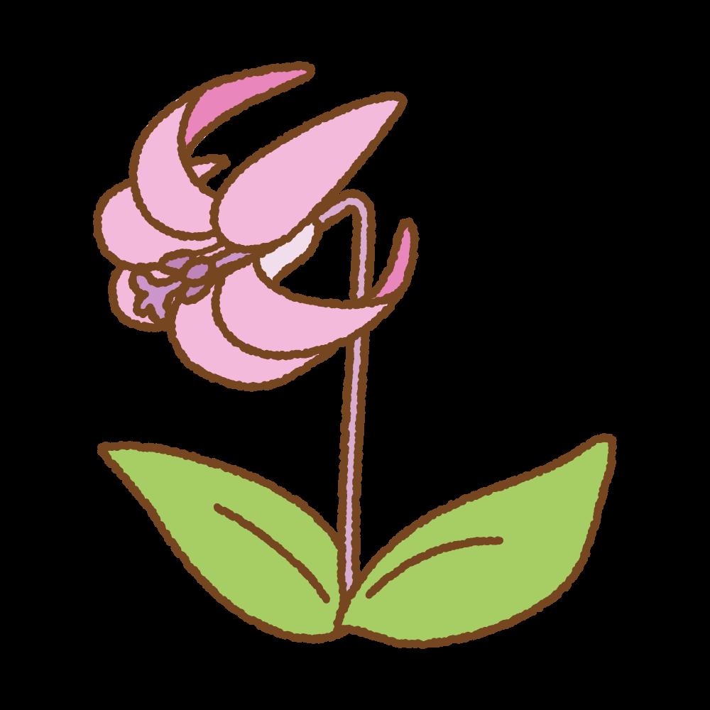 カタクリの花のフリーイラスト Clip art of katakuri flower