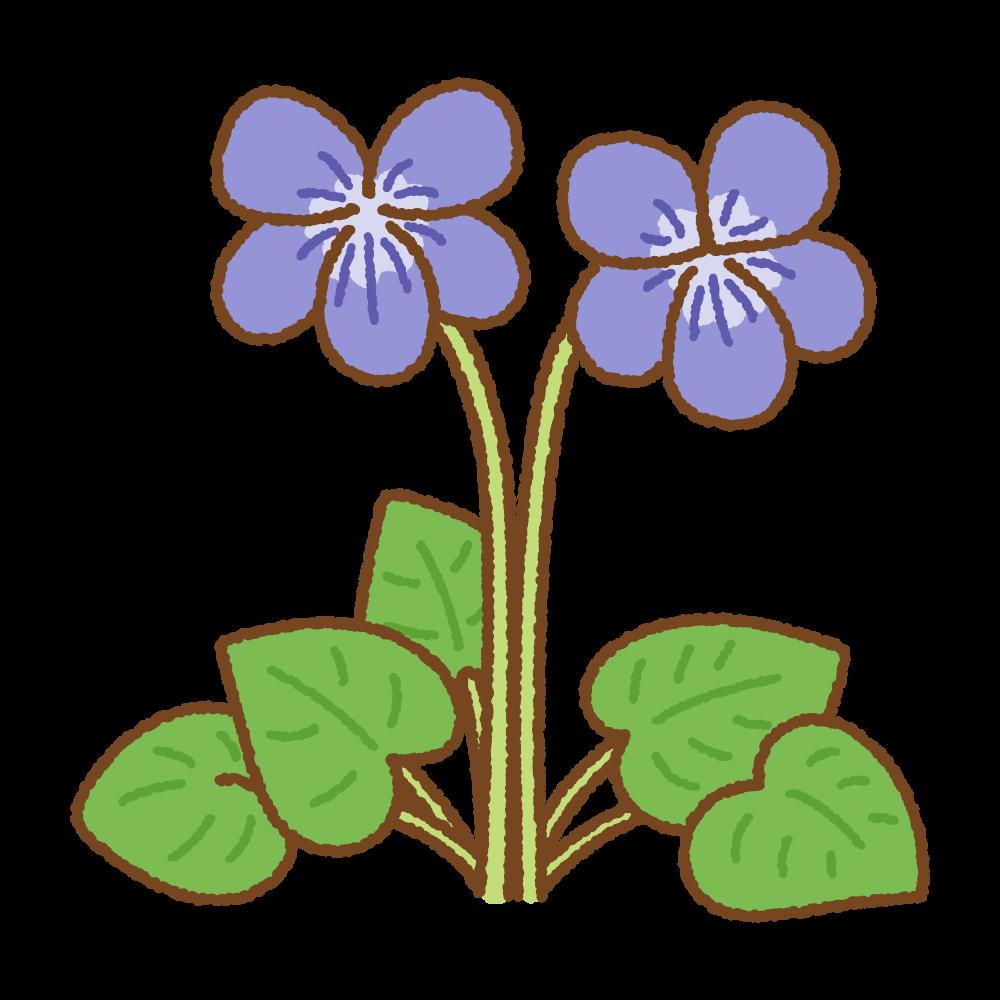 スミレのフリーイラスト Clip art of violet