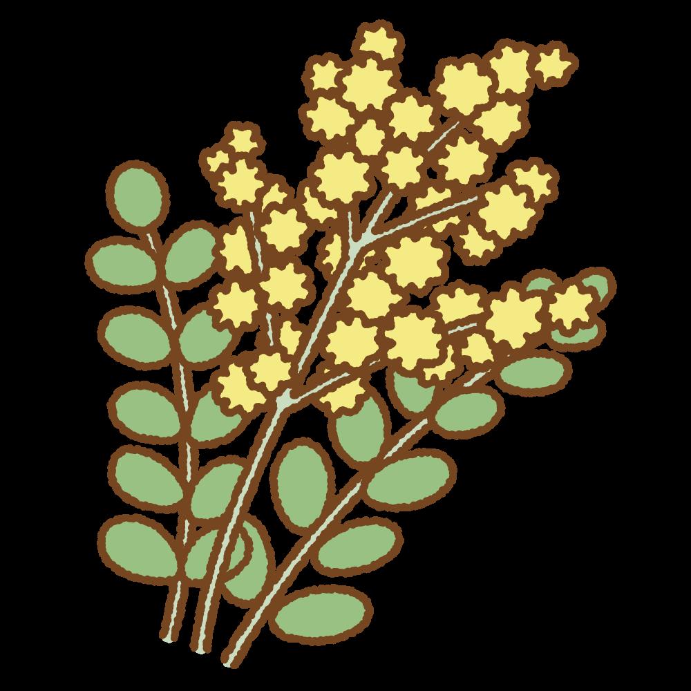ミモザのフリーイラスト Clip art of acacia