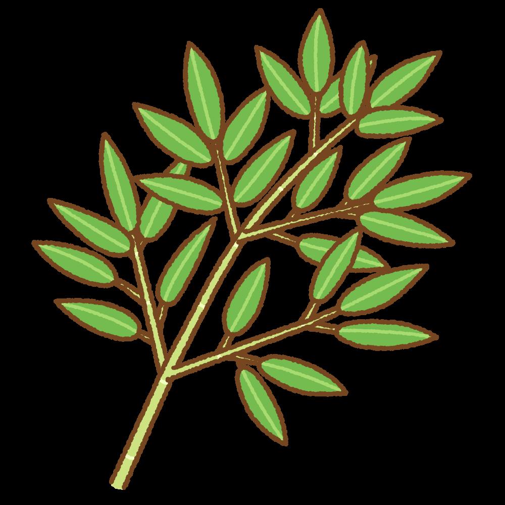 笹のフリーイラスト Clip art of bamboo grass