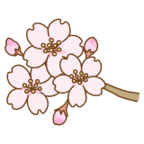 桜の花のフリーイラスト Clip art of cherry blossom flower