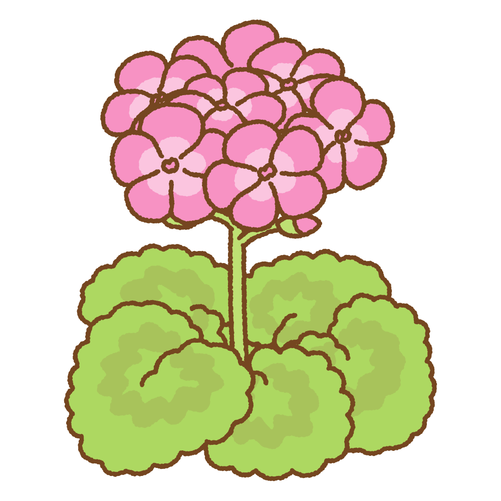 ゼラニウムのフリーイラスト Clip art of pink geranium